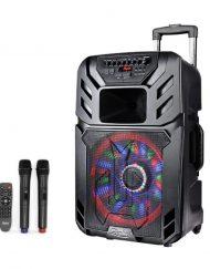 Преносима караоке система ZEPHYR ZP 9999 A12, 12 инча, Вграден акумулатор, Bluetooth, 2 бр. безжични микрофона
